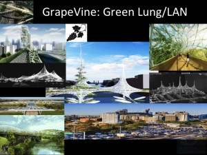 City Greening - Grapevine